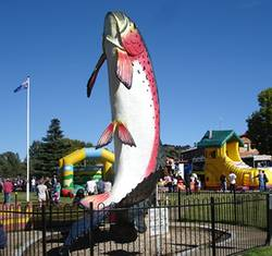 Big Trout and jumping castle at Adaminaby Easter Fair