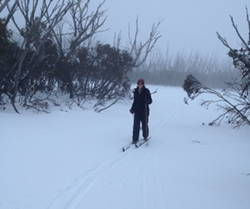 Crosscountry skiing at Cabramurra